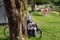 camping im nievre - Camping Eco-responsable